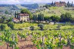 Chianti Estate by June Carey