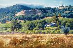 Alexander Valley Winery by June Carey