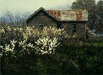 Wild Plum - Old farmhouse by landscape artist George Hallmark
