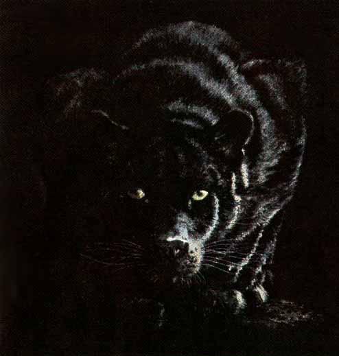 Гифка пантера, болею прикольные