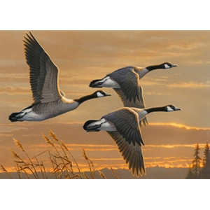 2017-2018 Federal Duck Stamp COLLECTOR'S PRINT ONLY - Geese at Sunset by James Hautman