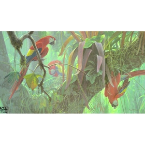Tropical Canopy - Scarlet Macaws by Robert Bateman