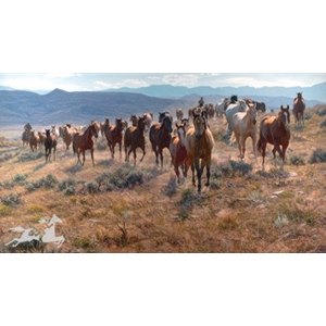 Cow Horse Country - horse herd by western artist Tim Cox