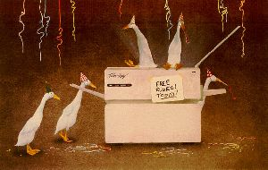 Fridays After Five - Ducks playing on Copy machine by Will Bullas